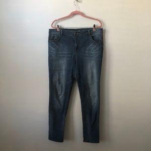 Avenue Denim Skinny Ankle Jeans 18